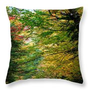 Trees Along The Flumes Trail Throw Pillow