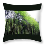 Trees Along The Umpqua River 2 Throw Pillow