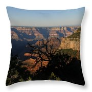 Trees And Canyon Throw Pillow