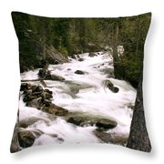 Trees And Falls Throw Pillow
