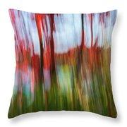 Trees And Lake Throw Pillow