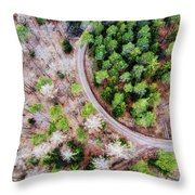 Trees And Path From Above Drone Photography Throw Pillow