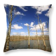 Trees And Sky Throw Pillow