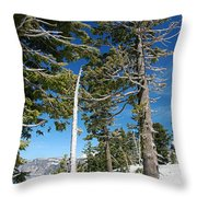 Trees And Snag At Crater Lake Throw Pillow
