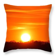 Trees And Sun Two  Throw Pillow