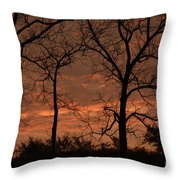 Trees And Sunrise Throw Pillow