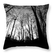 Trees At Dusk Throw Pillow