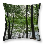 Trees At Lake Schlachtensee Throw Pillow