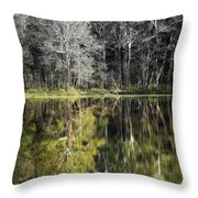 Trees At Otter Point Throw Pillow