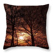 Trees At Sunset Throw Pillow