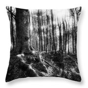 Trees At The Entrance To The Valley Of No Return Throw Pillow