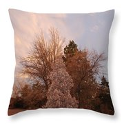 Trees At The State Capital Throw Pillow