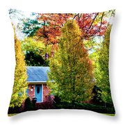 Trees Backlit By The Sun 0576t2 Throw Pillow