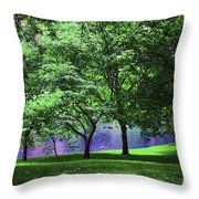 Trees By A Pond Throw Pillow