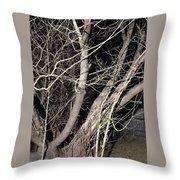 Trees Closeup Throw Pillow