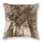 Trees Colliding Throw Pillow