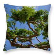 Trees In Bermuda Throw Pillow