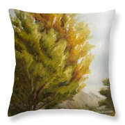 Trees In Boulder Throw Pillow