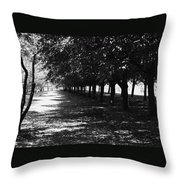 Trees In Chicago Throw Pillow