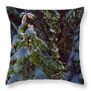 Trees In Deep Snow Making A Ghost Show Throw Pillow