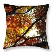 Trees In Fall Fashion Throw Pillow