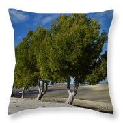 Trees In January Throw Pillow by Jo Ann