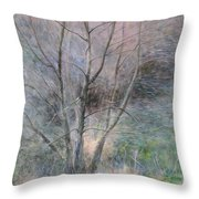 Trees In Light Throw Pillow