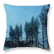 Trees In Northwest Throw Pillow