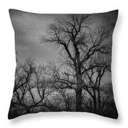 Trees In Storm In Black And White Throw Pillow