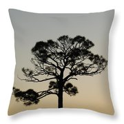 Trees In Sunset Throw Pillow
