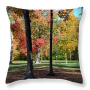 Tree's In The Forest 2 Throw Pillow