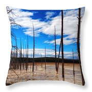 Trees In The Midway Geyser Basin Throw Pillow