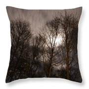 Trees In The Nigh Throw Pillow