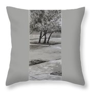 Trees In The Park Throw Pillow