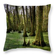 Trees In The Swamp Throw Pillow