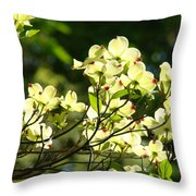 Trees Landscape Art Sunlit White Dogwood Flowers Baslee Troutman Throw Pillow