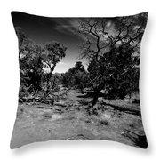 Trees Of Canyon Lands Throw Pillow
