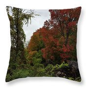 Trees Of Colorful Leaves In Autumn Mi Throw Pillow