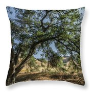 Trees Of The Forest 4 Throw Pillow