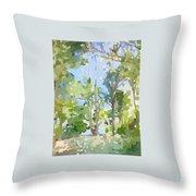 Trees On Ski Island, Banana River, Cape Canaveral, Fl. Throw Pillow