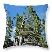 Trees On The Edge 1 Throw Pillow