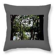 Trees Over Looking Water Throw Pillow