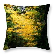 Trees Over The Flumes Gorge Throw Pillow