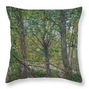 Trees Paris, July 1887 Vincent Van Gogh 1853  1890 Throw Pillow