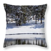 Trees Reflecting In Duck Pond In Colorado Snow Throw Pillow