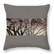 Trees Reflection Throw Pillow