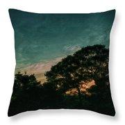 Trees - San Salvador Iv Throw Pillow