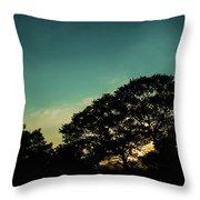 Trees - San Salvador V Throw Pillow