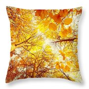 Trees Toward The Sun Throw Pillow