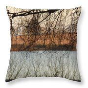 Trees With A Reflection Throw Pillow